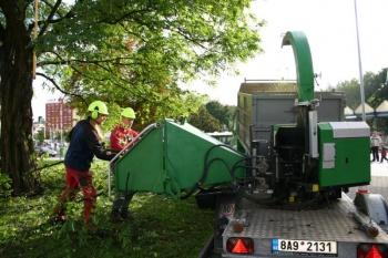 Praktická ukázka prořezu stromů a následné drcení dřeva